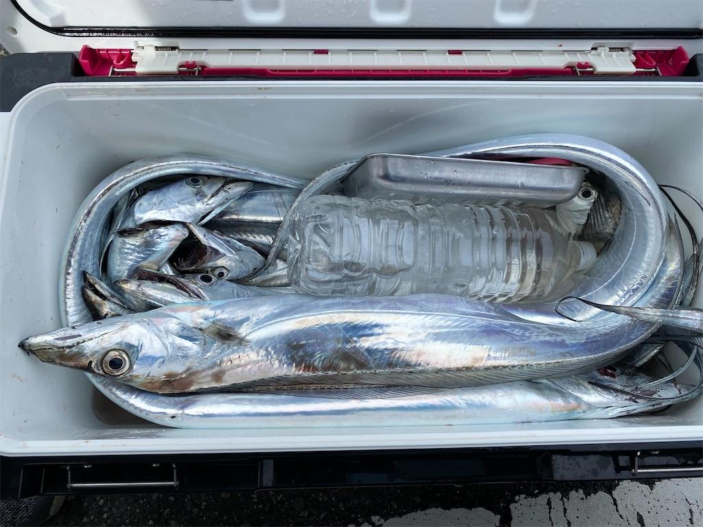 f:id:fishingandwine:20210918074803j:image