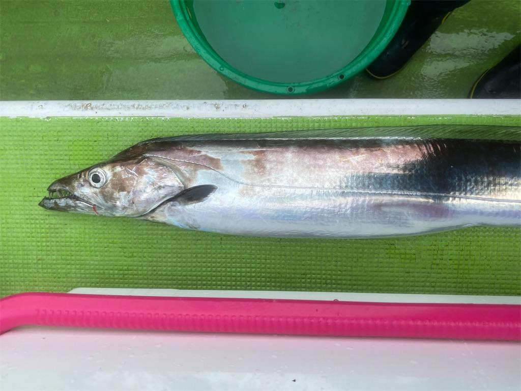 f:id:fishingandwine:20210918074814j:image