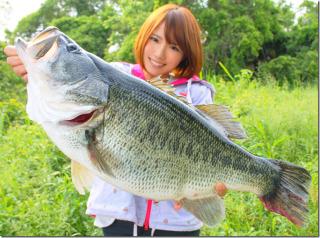 f:id:fishinglife:20170118222149j:plain