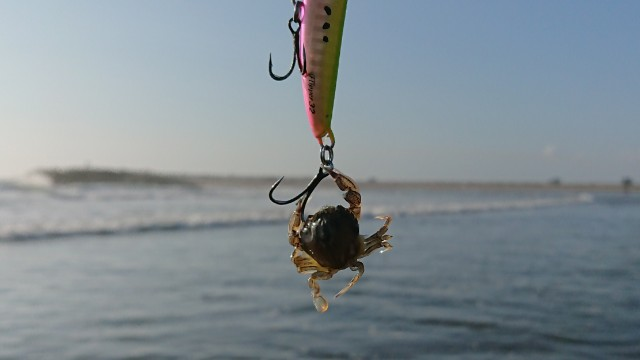 f:id:fishingpapa:20200804092419j:image
