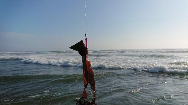f:id:fishingpapa:20200804092435j:image