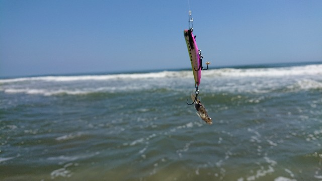 f:id:fishingpapa:20200804092511j:image