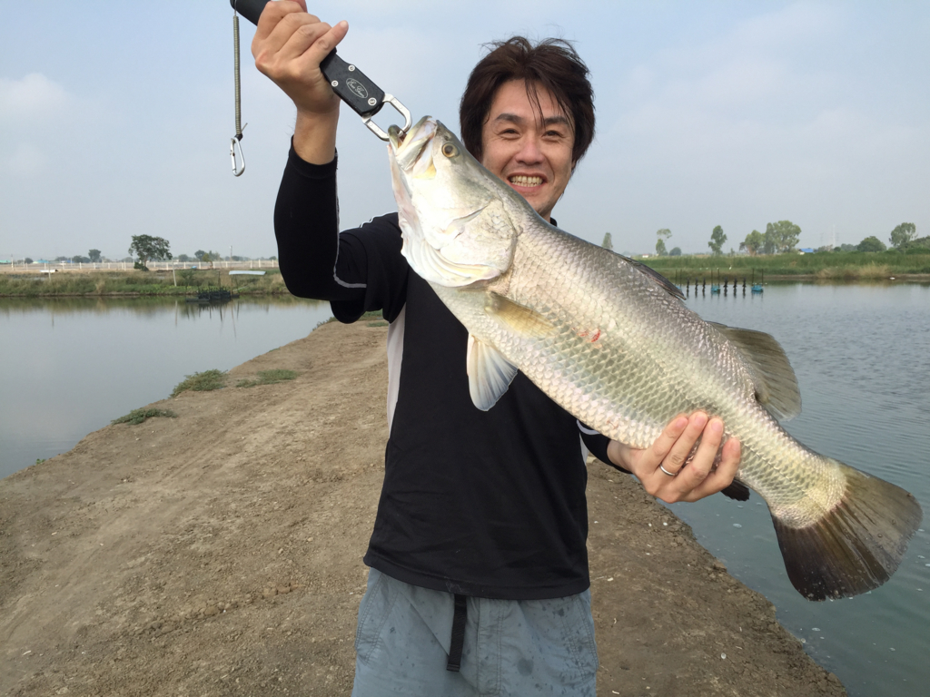 f:id:fishingtripper:20170618134817j:plain