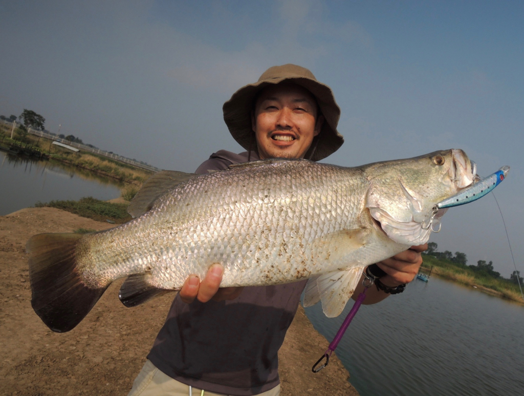 f:id:fishingtripper:20170618134918j:plain
