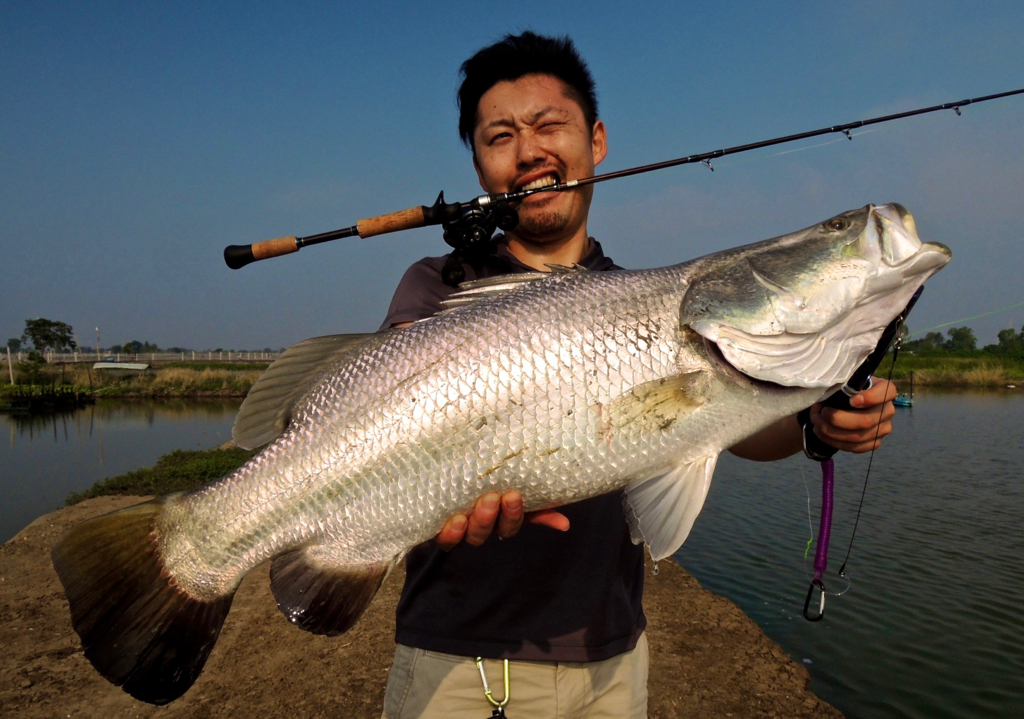f:id:fishingtripper:20170618135101j:plain