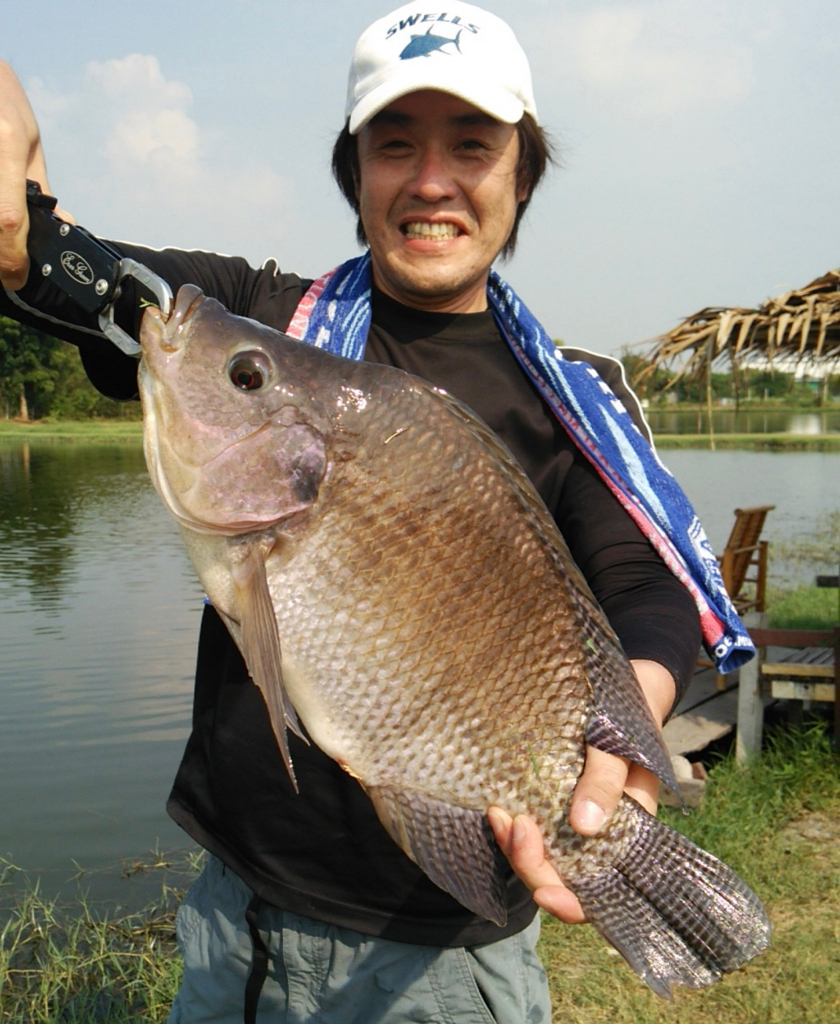 f:id:fishingtripper:20170618161409j:plain