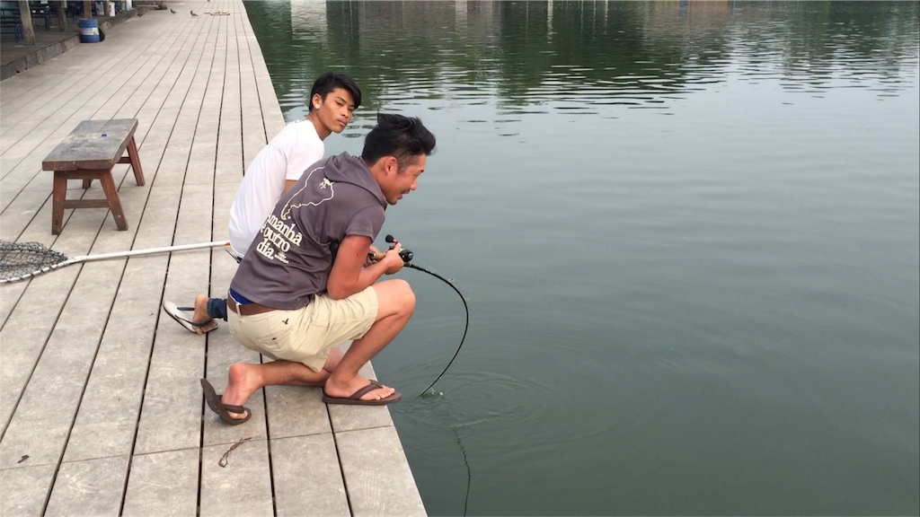 f:id:fishingtripper:20170625232716p:image