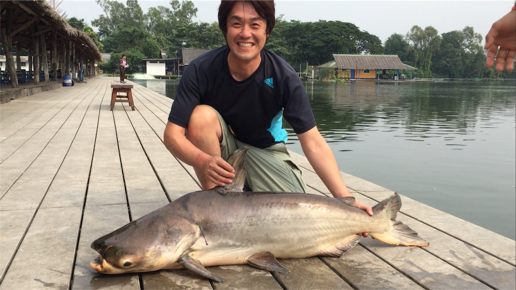 f:id:fishingtripper:20170626190841p:image