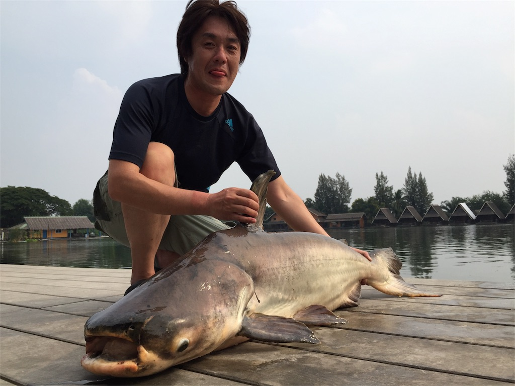 f:id:fishingtripper:20170626193205j:image