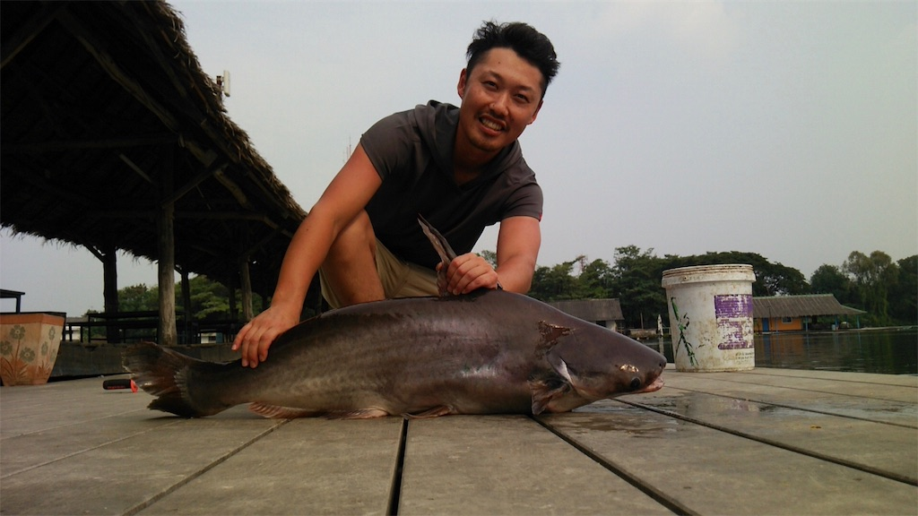f:id:fishingtripper:20170626193334j:image