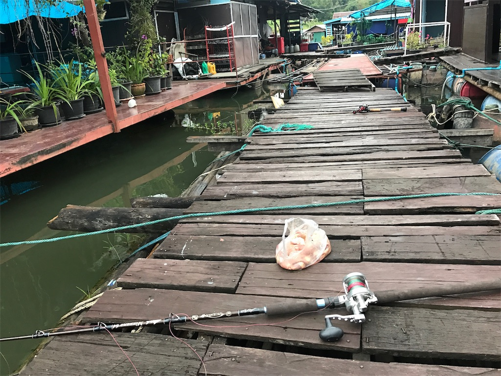 f:id:fishingtripper:20170706180659j:image