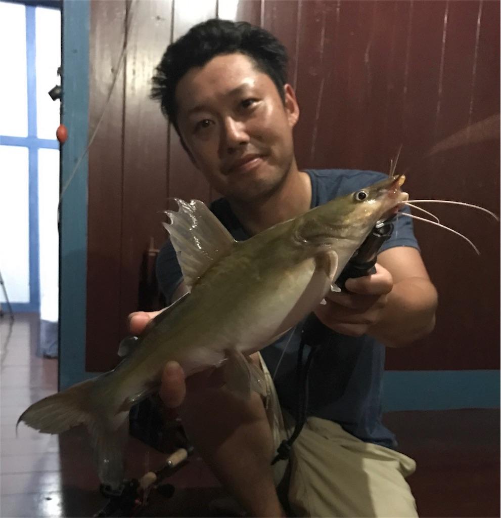 f:id:fishingtripper:20170714192126j:image