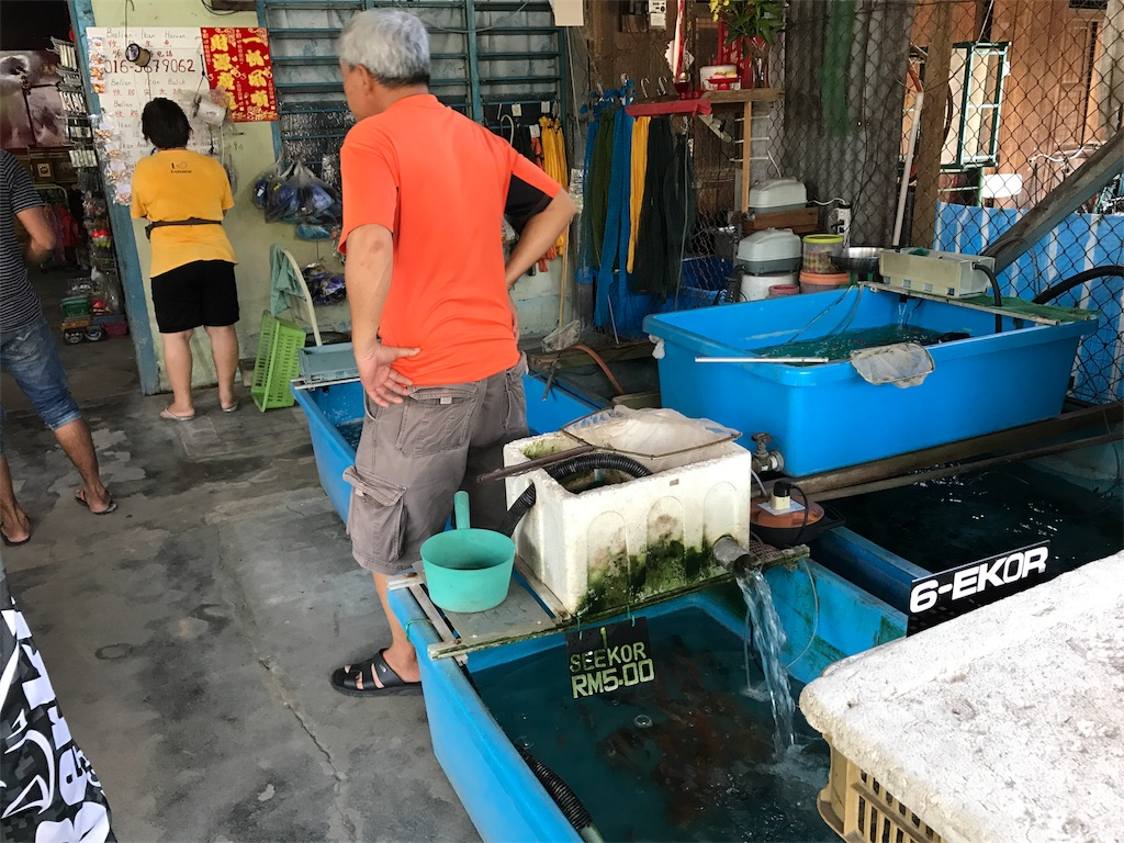 f:id:fishingtripper:20170816151849j:image