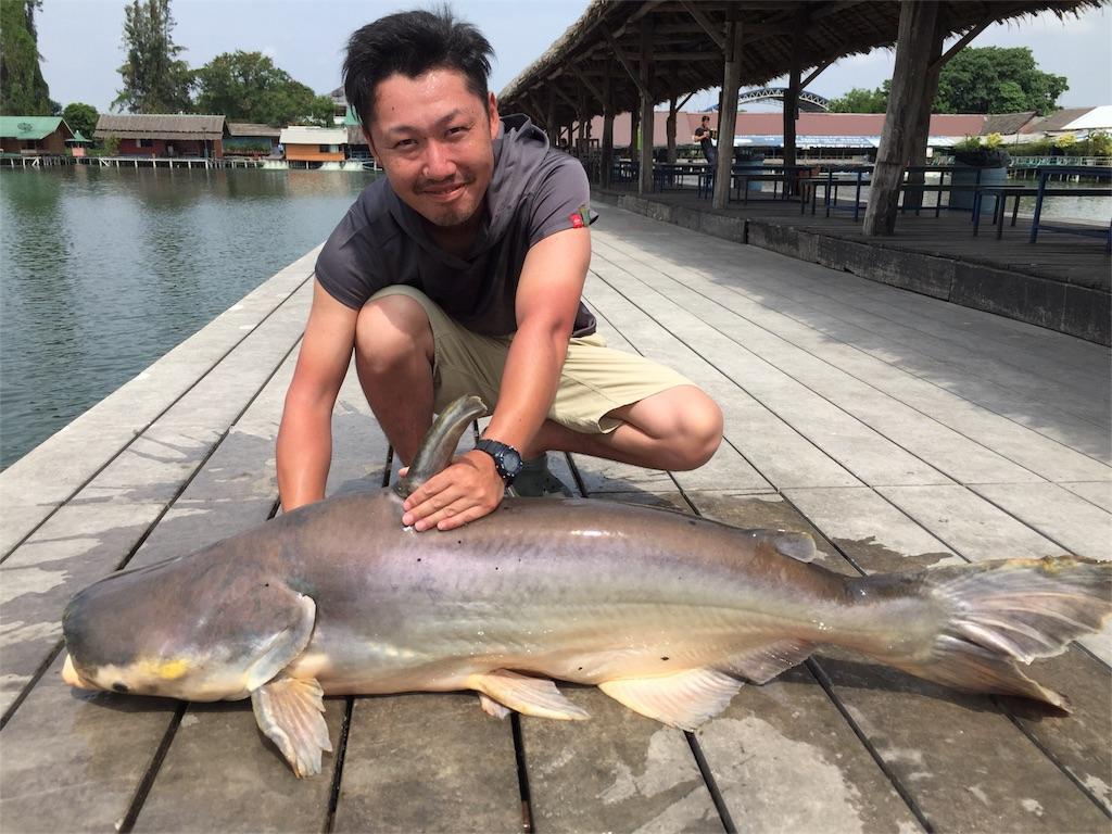 f:id:fishingtripper:20171031103631j:image