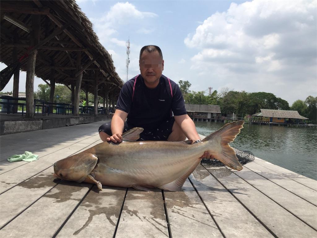 f:id:fishingtripper:20171031103940j:image