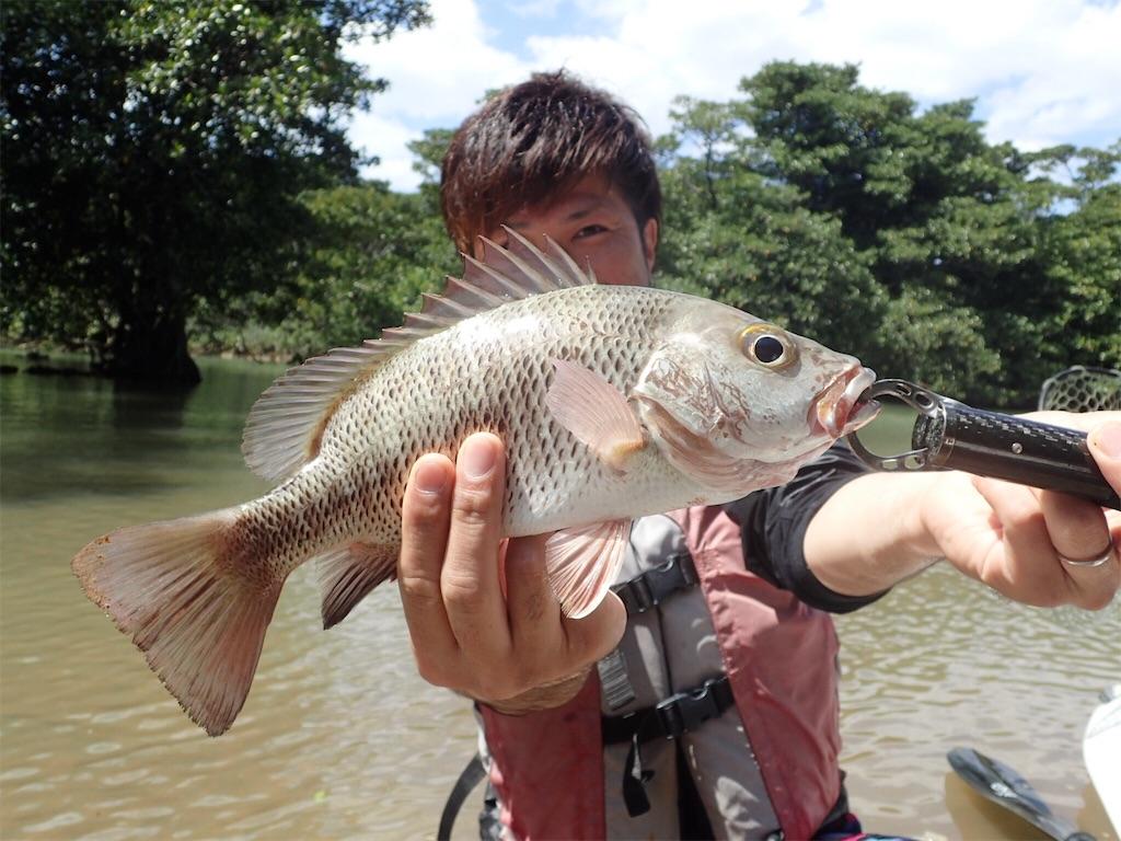 f:id:fishingtripper:20180412142050j:image
