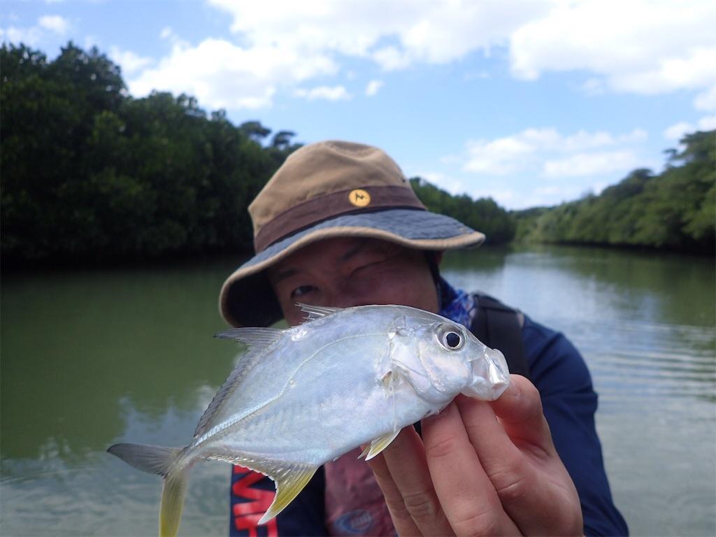 f:id:fishingtripper:20180412142956j:image