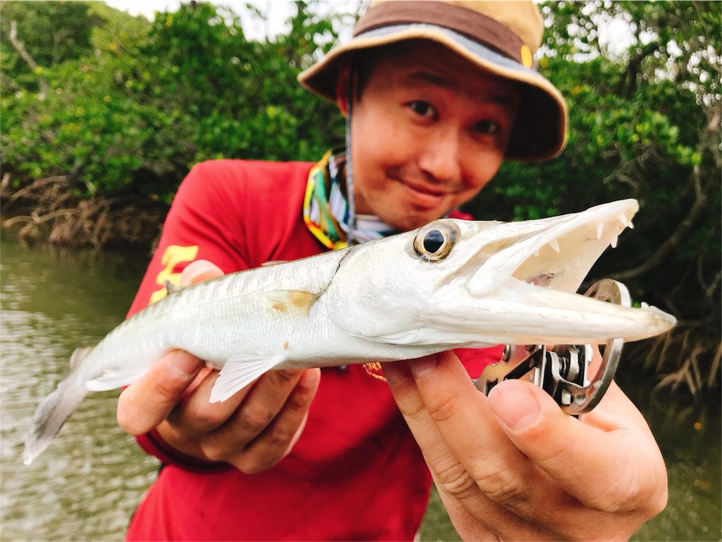 f:id:fishingtripper:20180416144510j:image