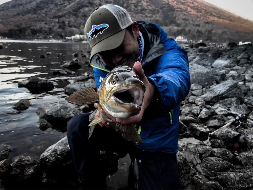 f:id:fishingtripper:20180424195548j:image