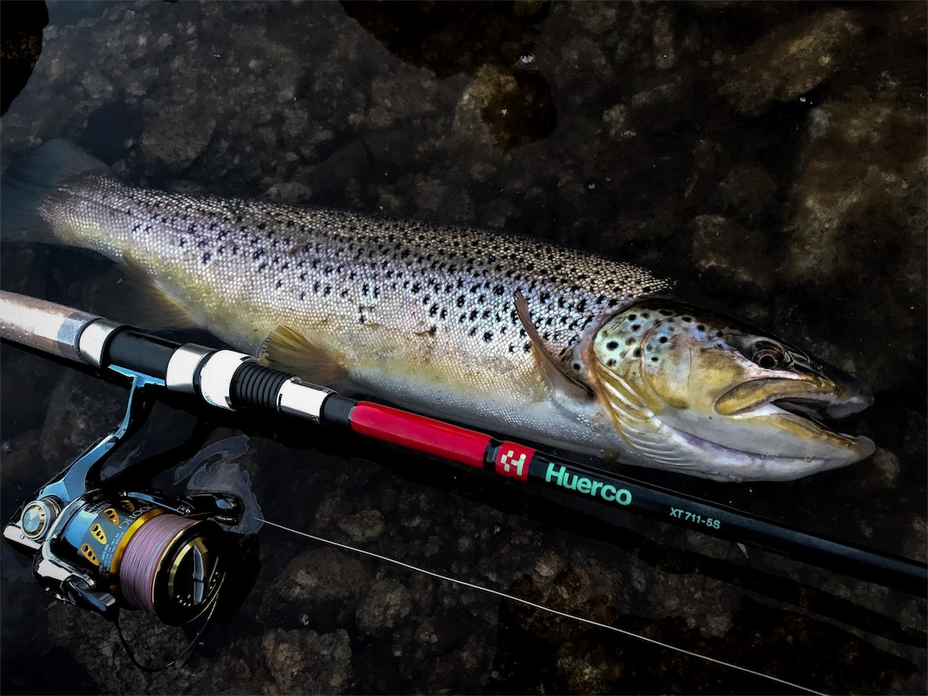 f:id:fishingtripper:20180427143733j:image