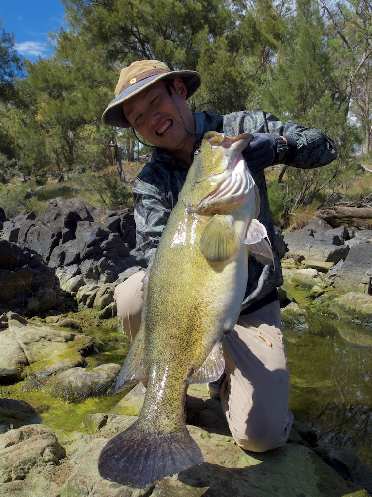 f:id:fishingtripper:20190329124212j:image