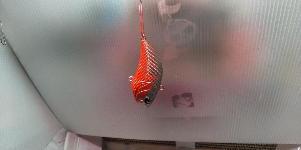f:id:fishman-takasan-blog:20210213172128j:plain