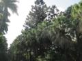 f:id:fjosh524:20121207143418j:image:medium
