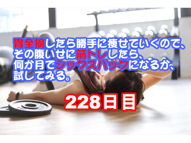 f:id:fk_aosan:20210403193019p:plain