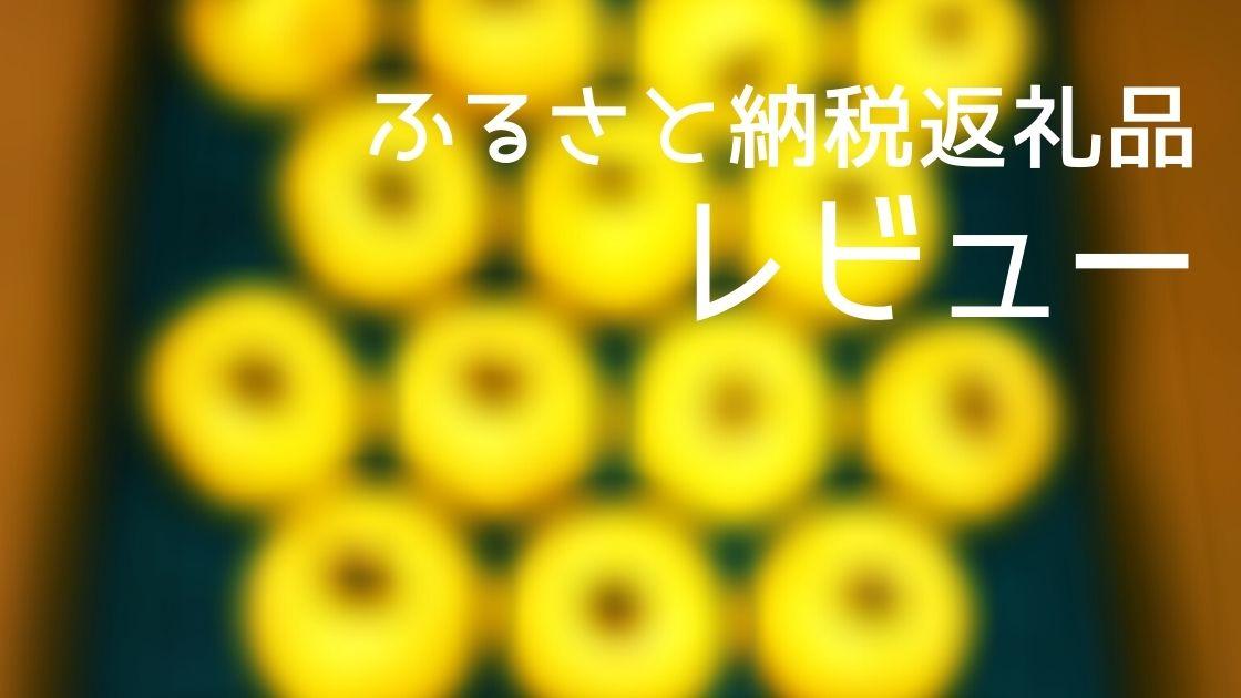f:id:fkmaru:20201107211750j:plain