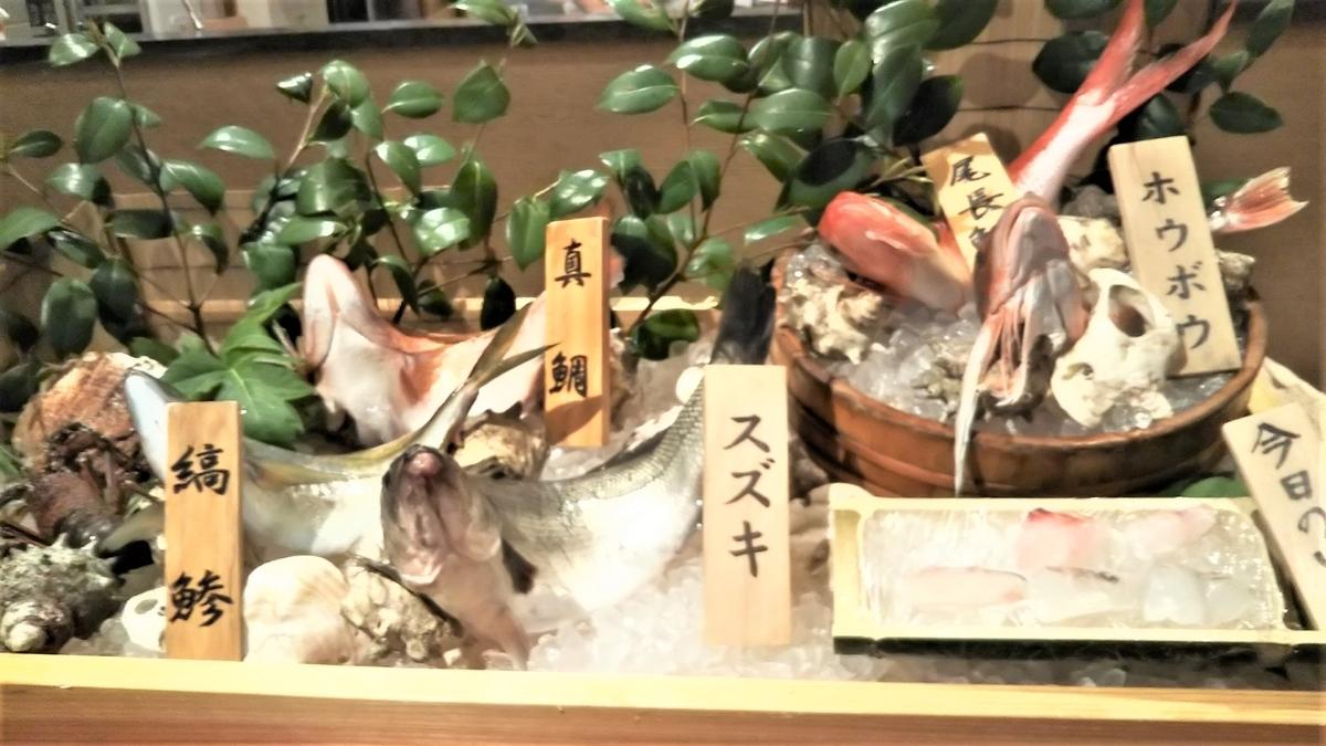 好きなお魚を選べます。
