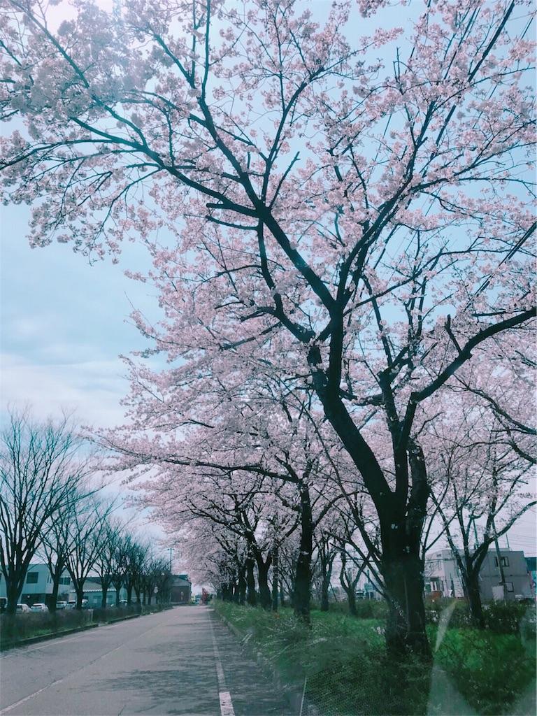 f:id:flat37takashi:20180410101720j:image