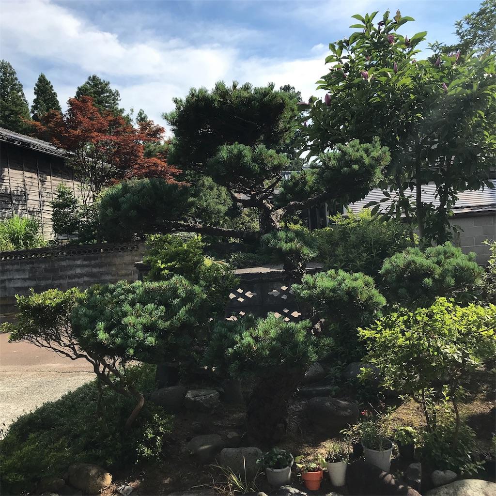 f:id:flat37takashi:20180717103211j:image
