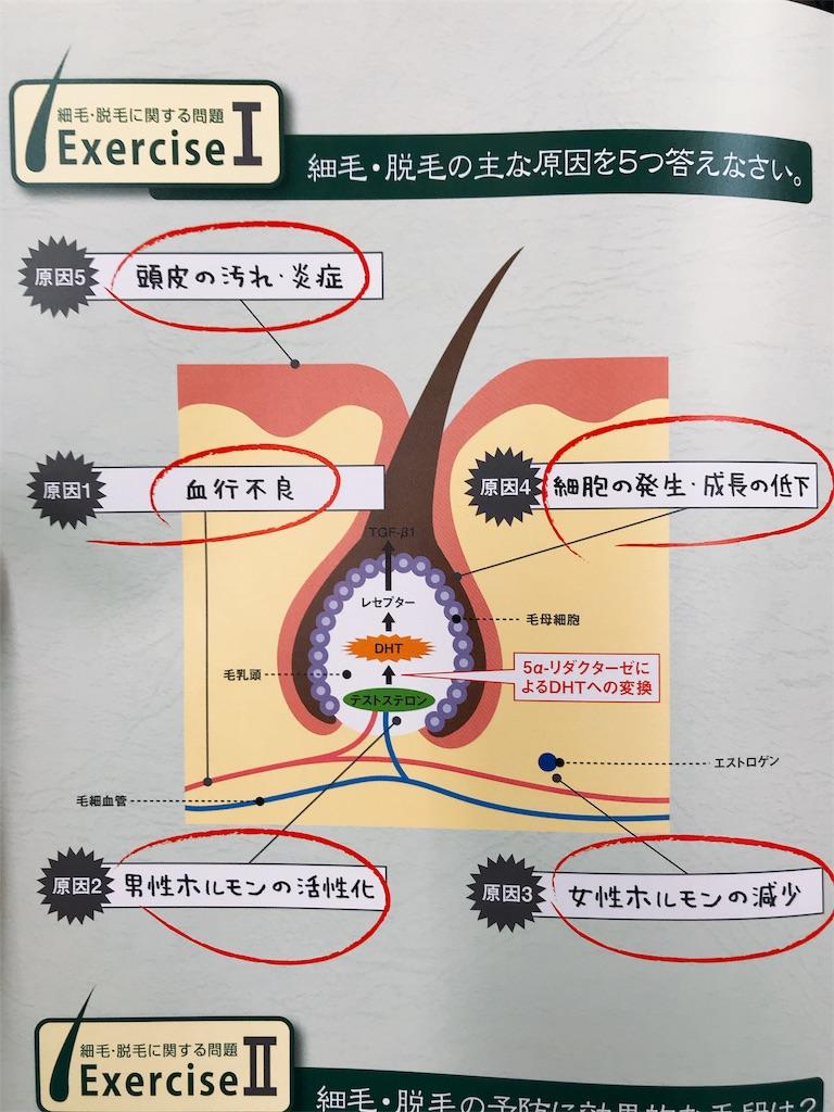 f:id:flat37takashi:20180905100558j:image