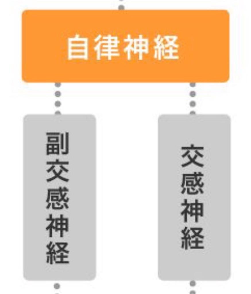 f:id:flat37takashi:20181009102504j:image