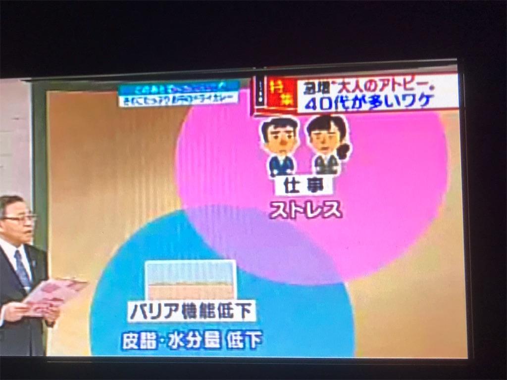 f:id:flat37takashi:20190112100721j:image