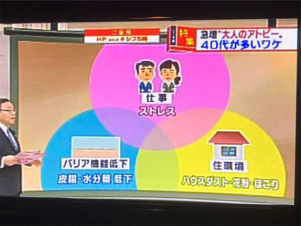 f:id:flat37takashi:20190112101830j:image