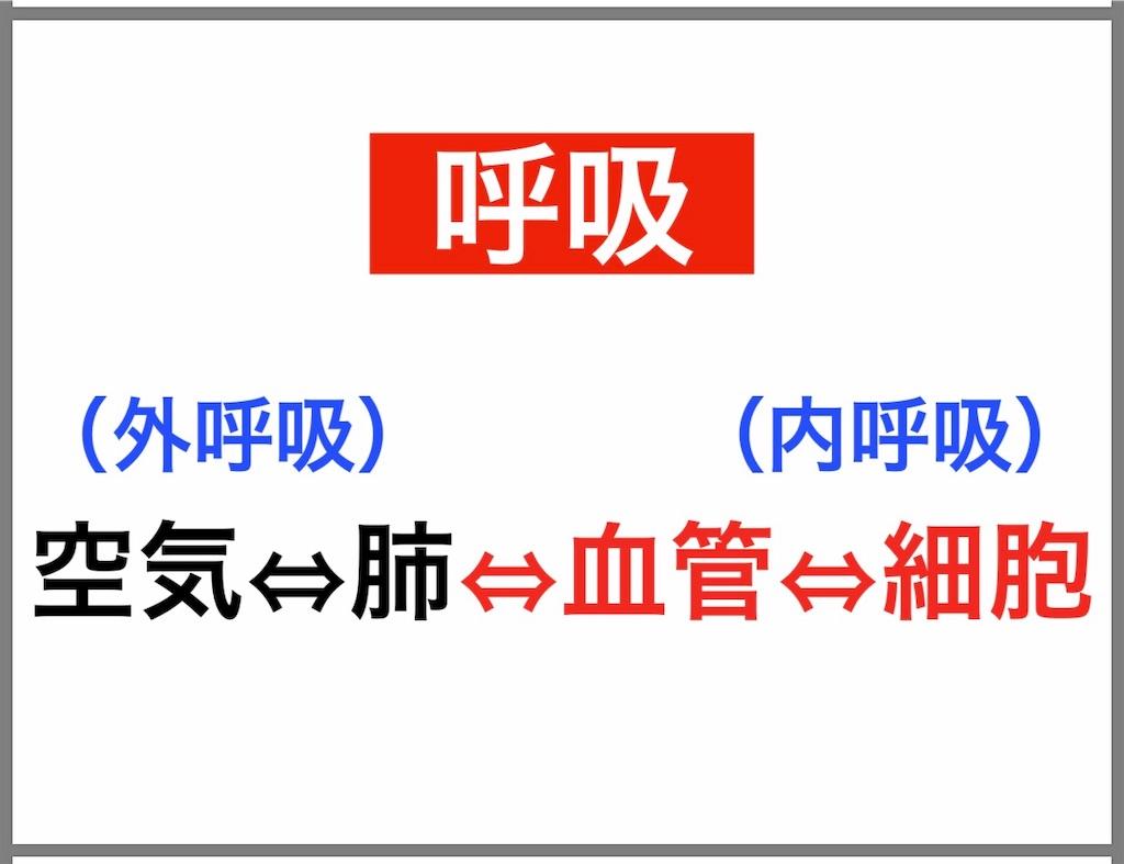 f:id:flat37takashi:20190212100419j:image