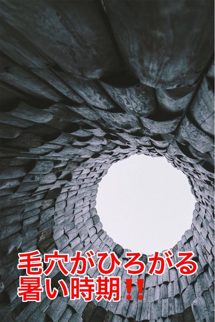 f:id:flat37takashi:20190822101208j:image