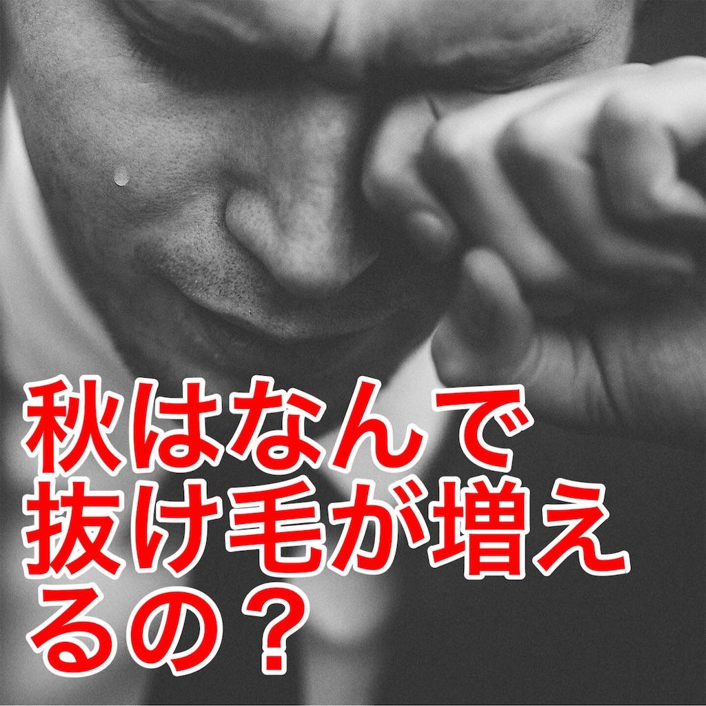f:id:flat37takashi:20190901153036j:image