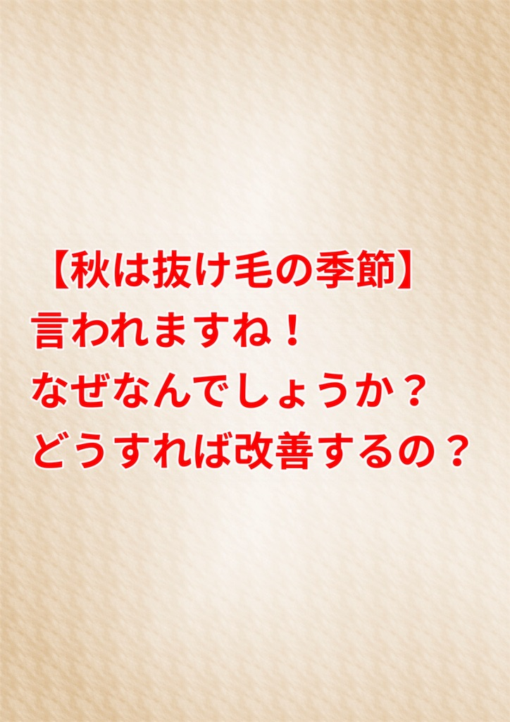 f:id:flat37takashi:20190901153110j:image