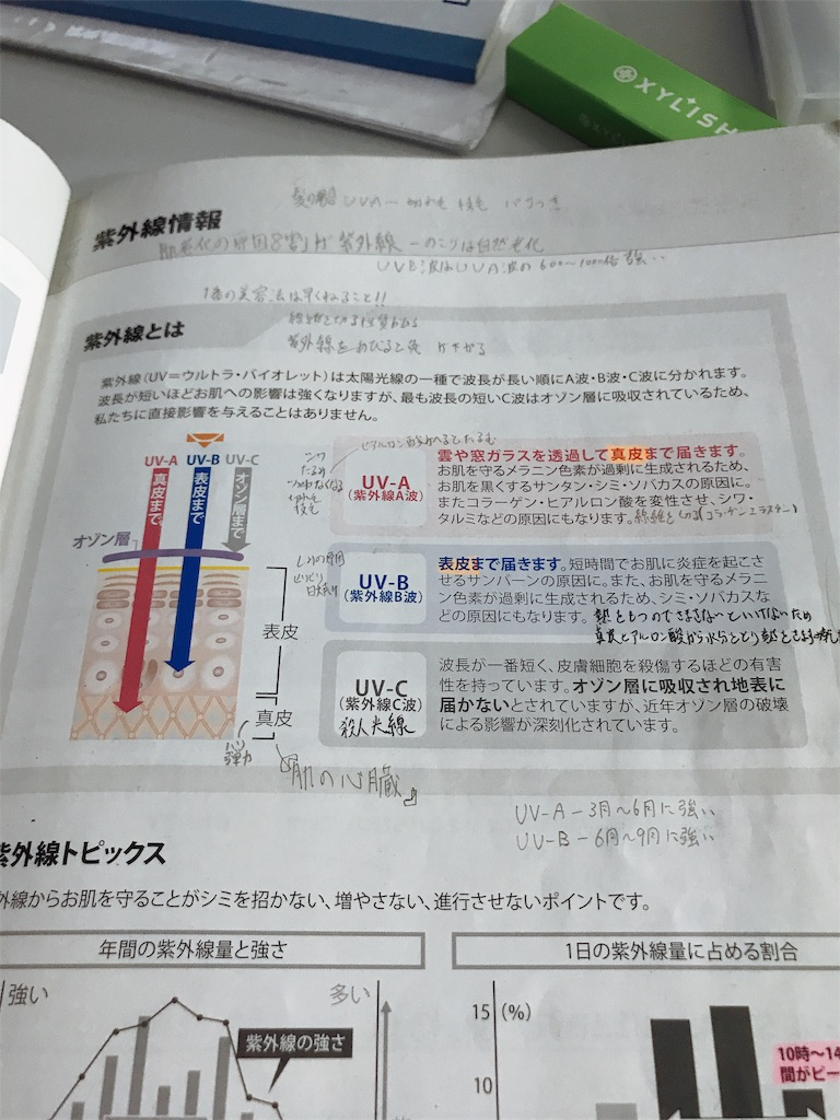 f:id:flat37takashi:20190909134924j:image
