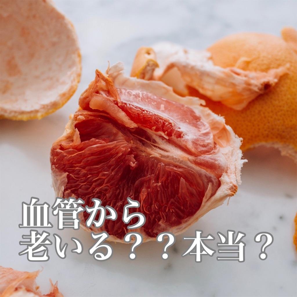 f:id:flat37takashi:20190925094049j:image