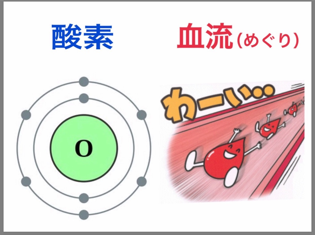 f:id:flat37takashi:20191002101137j:image