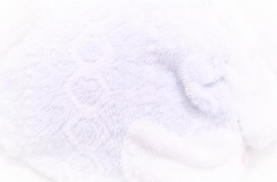 f:id:fleur12:20200105202718p:plain