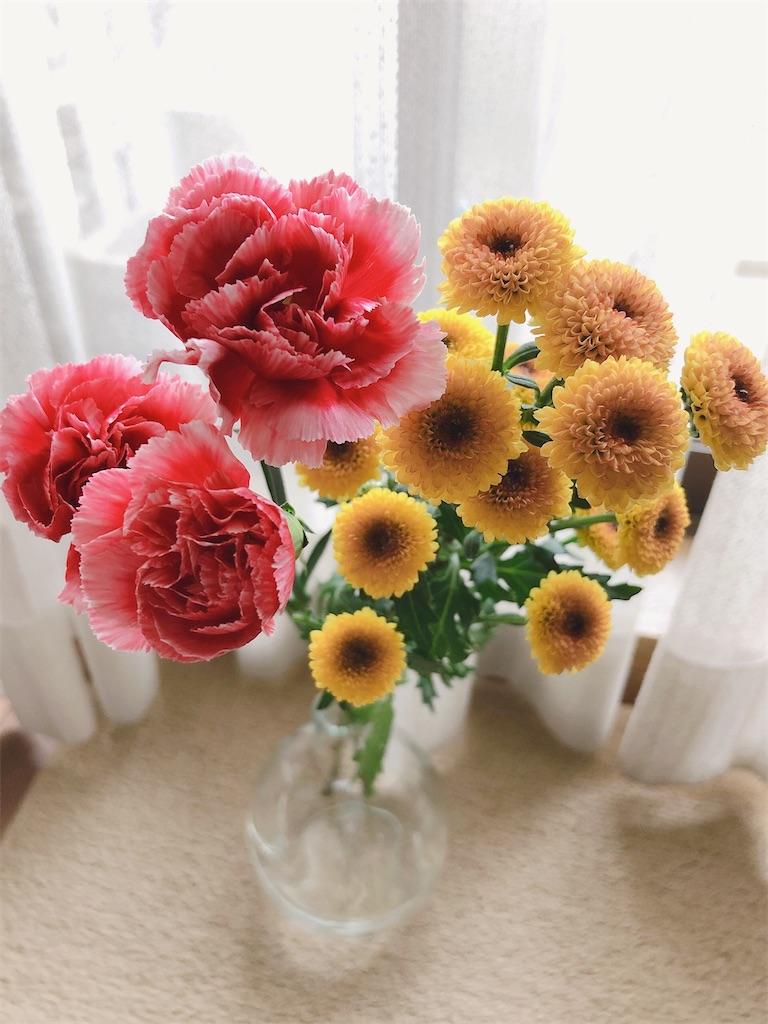 f:id:fleursereine:20210317131312j:image