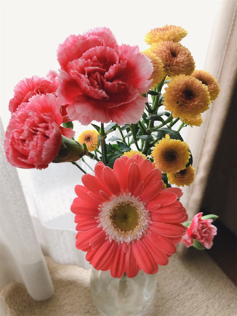 f:id:fleursereine:20210317131319j:image