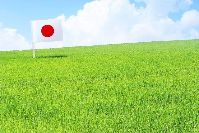 日本平和。