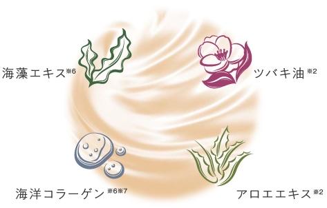 f:id:florachroma:20210520111252j:plain