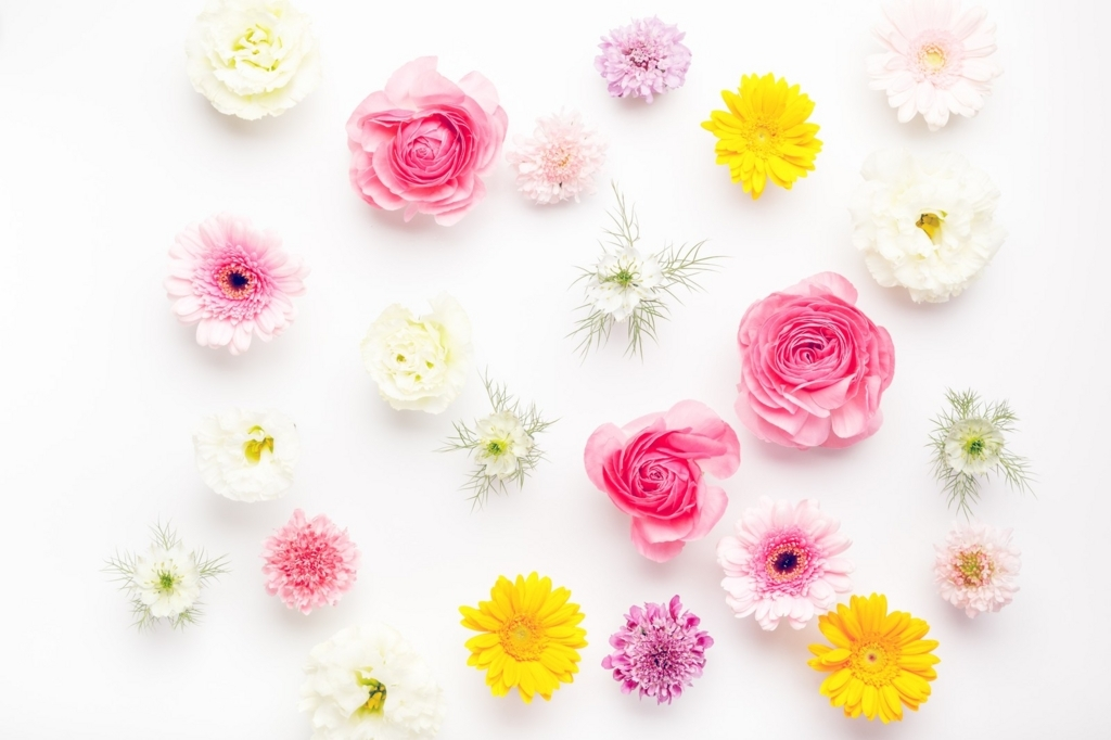 f:id:floraisony:20180106191018j:plain