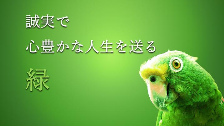 緑色の背景に緑のオウムがつぶらな瞳で小首小首をかしげてこちらを見ている